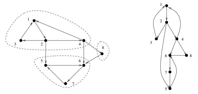 the algorithm design manual flipkart